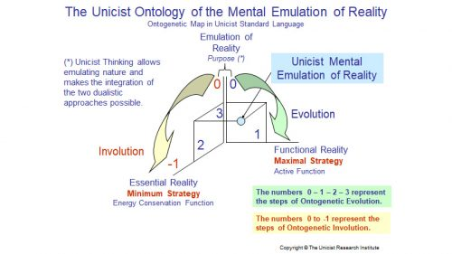 The Mental Emulation Process