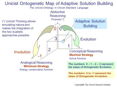 Conceptual Reasoning and Analogical Reasoning for Solution Building