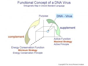 DNA Virus