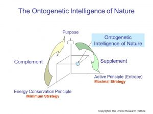 Ontogenetic Intelligence of Nature