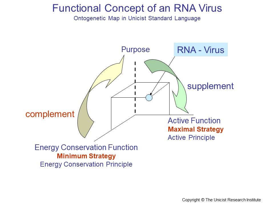 RNA-Viruses