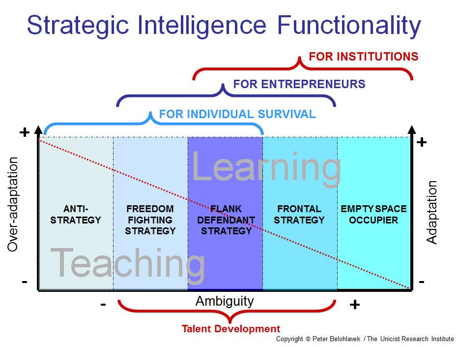 Functionality of the Strategic Intelligence
