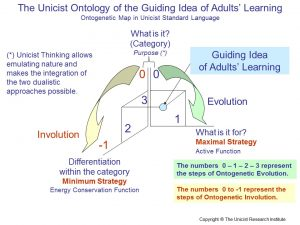 Building the Guiding Idea in Adults´ Learning Process