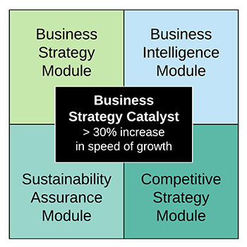 Business Strategy Catalyst